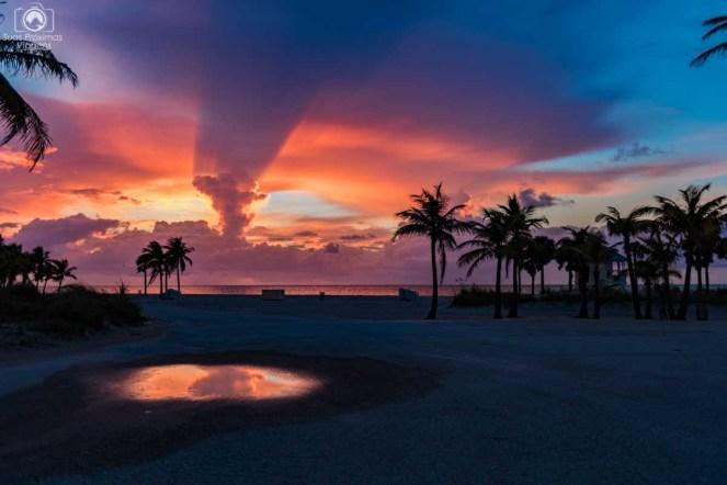 Amanhecer no Crandon Park em O que fazer em Miami