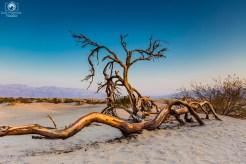 Dunas no Death Valley