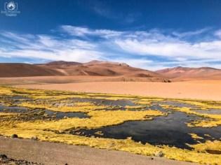 Mirador Quebrada Quepiaco no Roteiro de 5 Dias no Deserto do Atacama