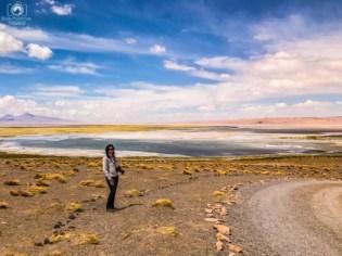 Salar de Tara no Roteiro Atacama