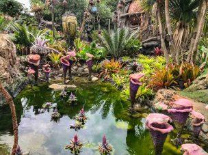 Paisagismo do Avatar no Animal Kingdom em Parques em Orlando