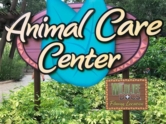 Animal Care Center no Busch Garden em Tampa