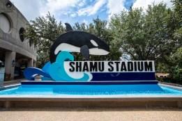 Shame Stadium no Seaworld em o que fazer em Orlando