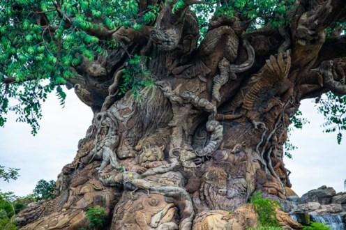 Close da Árvore da Vida no Magic Kingdom nos Parques da Disney