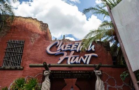 Entrada da Montanha-Russa Cheetah no Busch Gardens