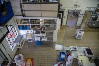 Imagem da Linha de Produção da Araucária em Campos do Jordão