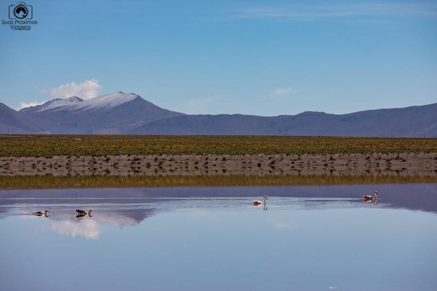 Imagem da Laguna Vinto no sul da Bolívia