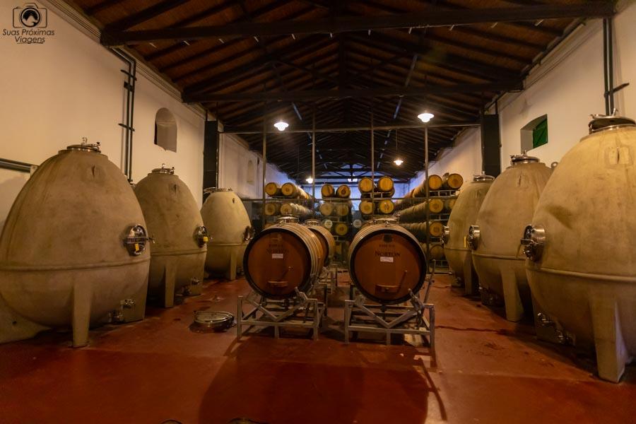 """Imagem dos """"Ovos"""" de maturação dos vinhos Norton em Mendoza"""