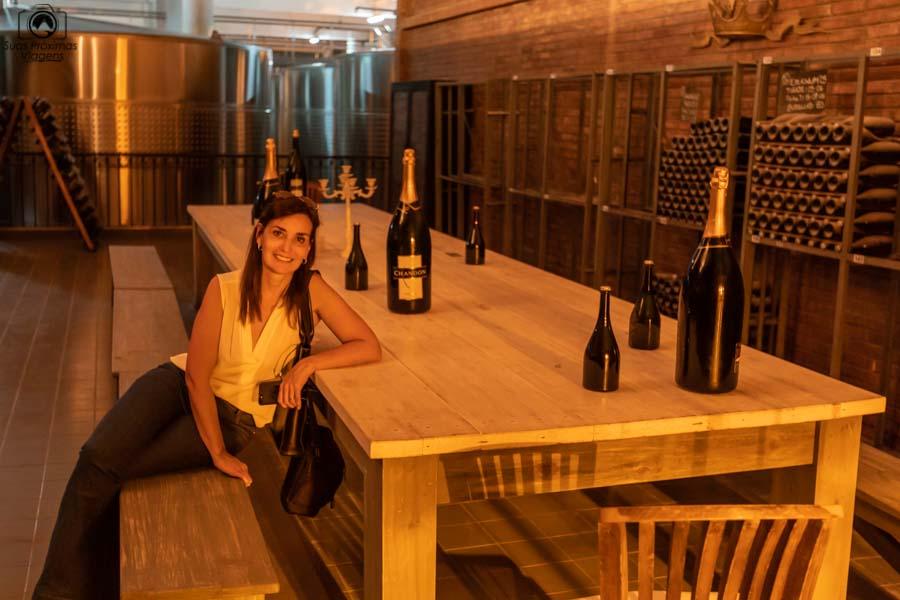 Imagem do Tour da Vinicola Chandon em Mendoza Argentina