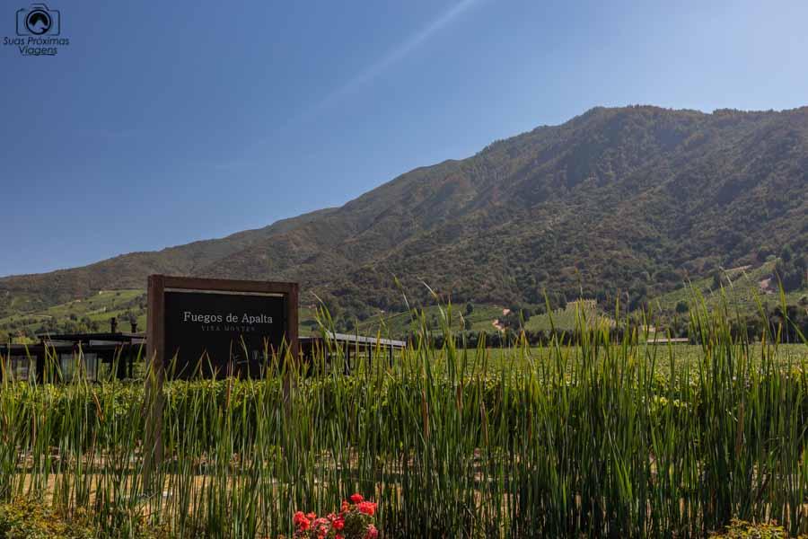 imagem do restaurante na vinícola Montes nos melhores vinhos chilenos