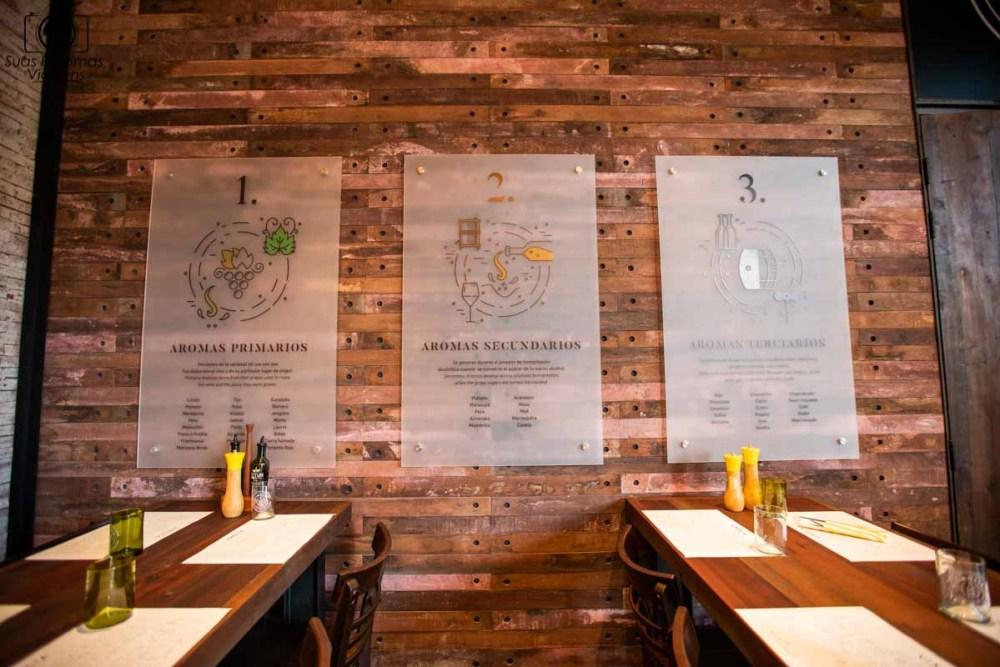 Imagem das telas ilustrativas sobre degustação de vinhos na Vinolia