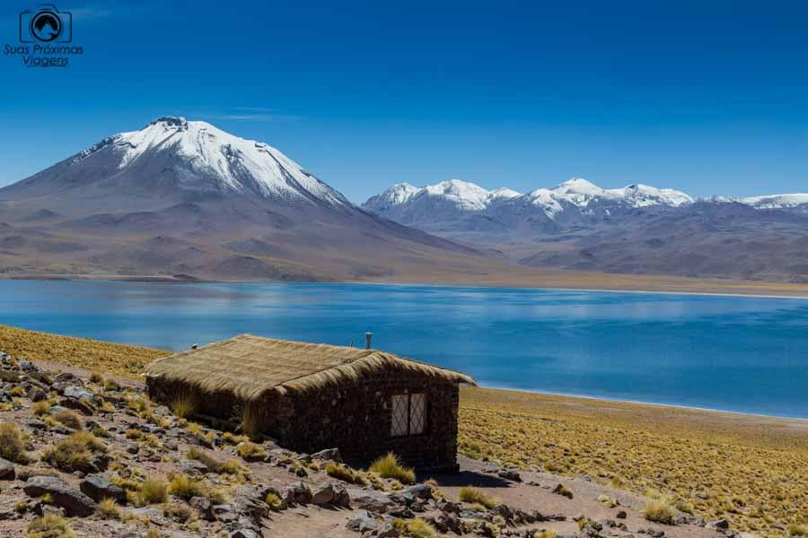 Imagem das Lagunas Altiplânicas - Miñiques no Deserto do Atacama