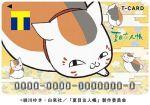【夏目友人帳×Tカード】ニャンコ先生デザイン版を10/19より発行開始!