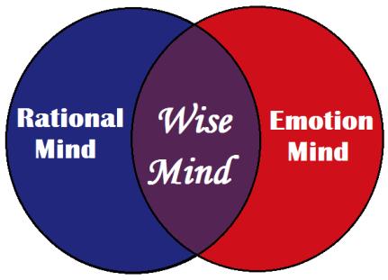 wise_mind