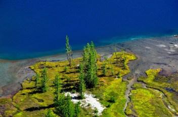 Wetland by Crystal Lake