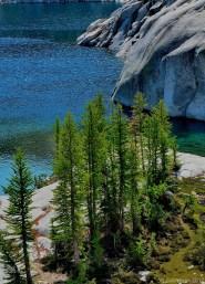 Larches by Leprechaun Lake