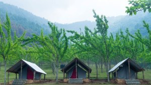 Tent Stay at Chitlang