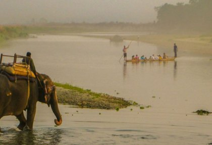 Chitwan-National-Park. Elephant safari