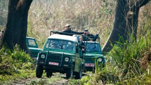 Jeep Safari-Chitwan