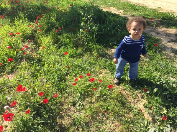 Grace wondering through the fields at Matan running through the fields at Darom Adom, the Southern Anemone Festival