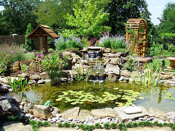 koi ponds sublime water