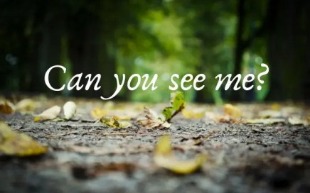 girl - Can you see me
