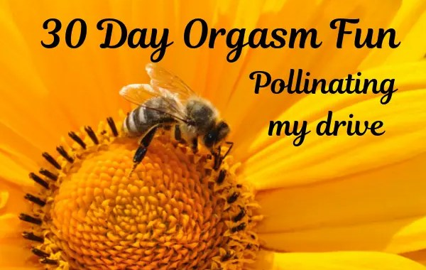 fun orgasm - 30 day orgasm challenge