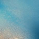 Profile picture of MasterCa$hFag