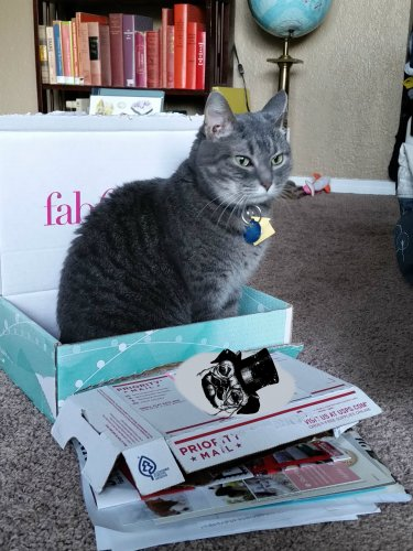 bella helping with the recycling