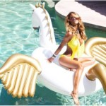 Pegasus pool float
