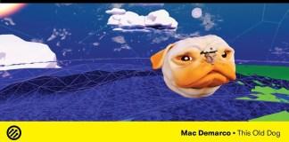 mac demarco old dog video