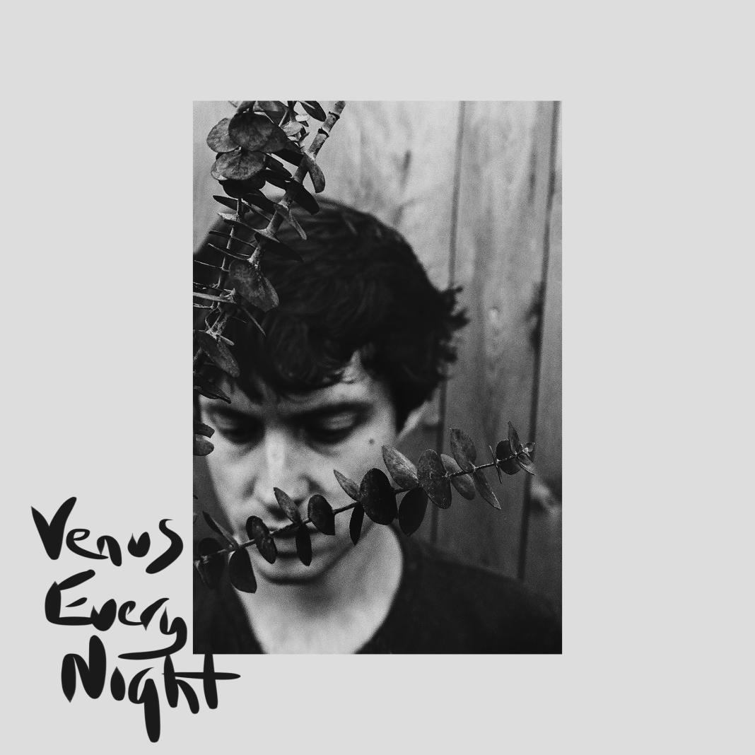 tom gallo venus every night