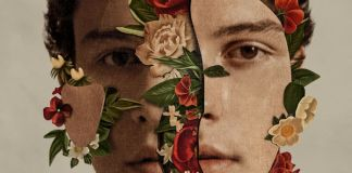 shawn mendes cover art