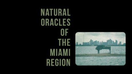 Natural-Oracles-Mimai-Region-FB