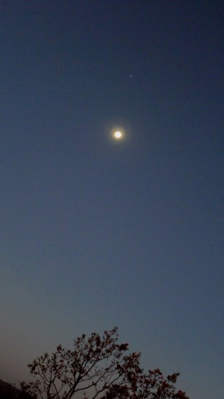 CELESTIAL SHOW -- Moon and Venus shine at dawn.