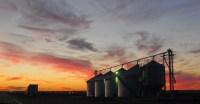 BINNED -- Grain bins in the sunset between Hazen and Lonoke.