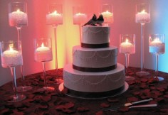 Beautiful Display of the Wedding Cake