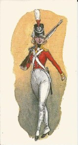 British Foot Guard, 1815?