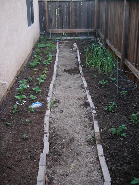 Our garden (I'm standing at the gate)