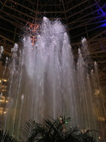 Nashville Opryland Christmas Lights