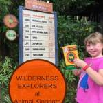 Wilderness Explorers- Animal Kingdom