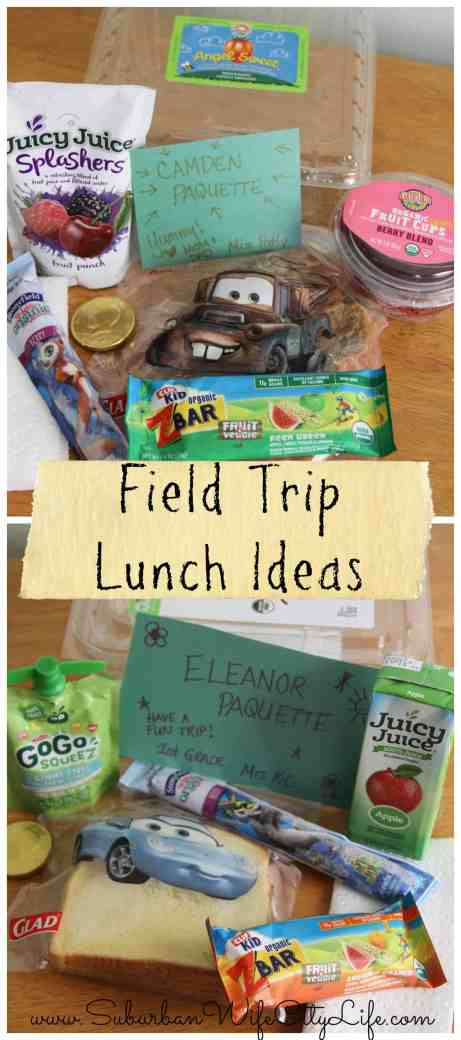 Easy Field Trip Lunch Ideas