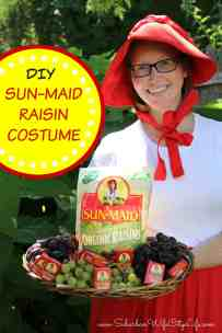 Sun-Maid Raisin Costume DIY