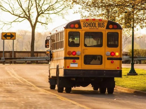 Which Westchester School Districts Provide School Bus Transportation?