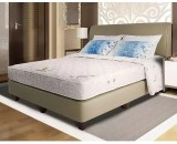 Springbed Alga Type Gold Magnetic Deluxe