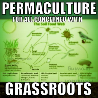 permaculture-grassroots