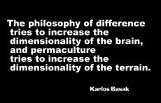 perma-dimensionality