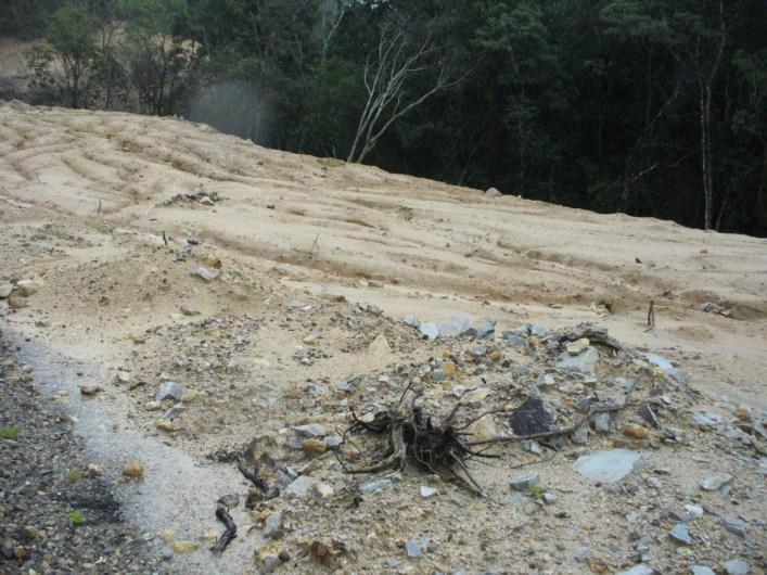 Devastación en La Montaña de Guerrero /Foto: Armando Campos