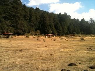 Vista del bosque de Xochicuautla. Fotografía: Jaime Vargas González