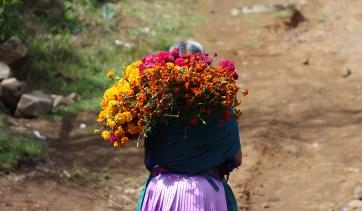 Mujer p'urhépecha con flores
